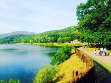 Footpath Along Lake Under Blue Sky