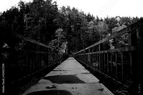 Photo Footbridge Amidst Trees Against Sky