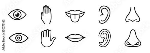Leinwand Poster Five senses vector icons set