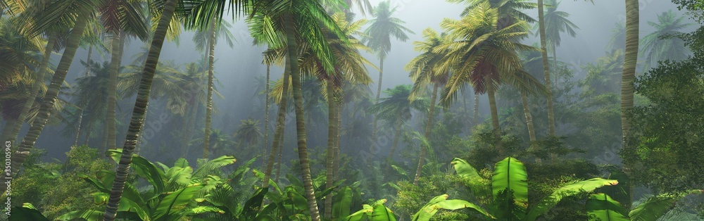 Fototapeta Jungle in the fog, palm trees in the morning, haze in the jungle, palm trees in the haze,