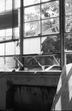 Broken Glass Windows Of Abandoned Building