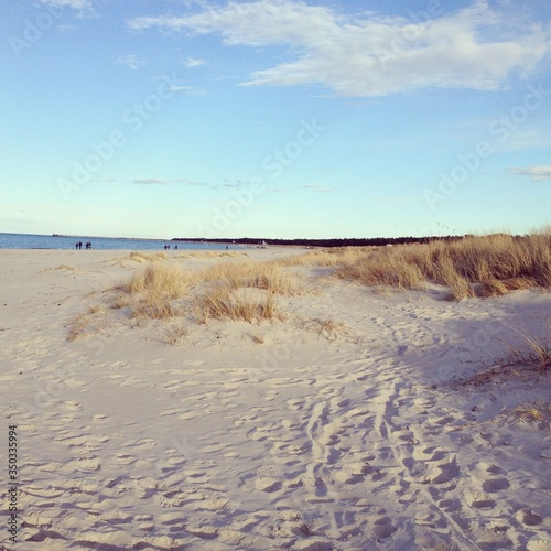 Scenic View Of Beach Against Sky #350335994
