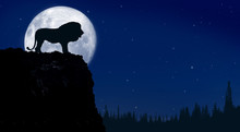 Big Lion On The Rock With Full Moon