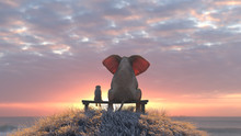 Elephant And Dog Watch The Sun...