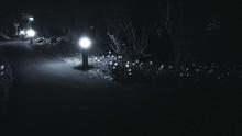 Illuminated Lighting Equipment At Roadside During Night