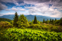 Mount Mitchell Standing Tall On A Summer Morning Along The Blue Ridge Parkway In The Black Mountains Of Western North Carolina Located In The Southern Appalachian Mountains.