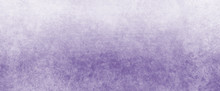 White Background With Purple G...