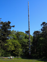 Tall Totem Pole In Forest Against Clear Blue Sky