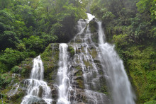 Water Fall In The Green Area O...