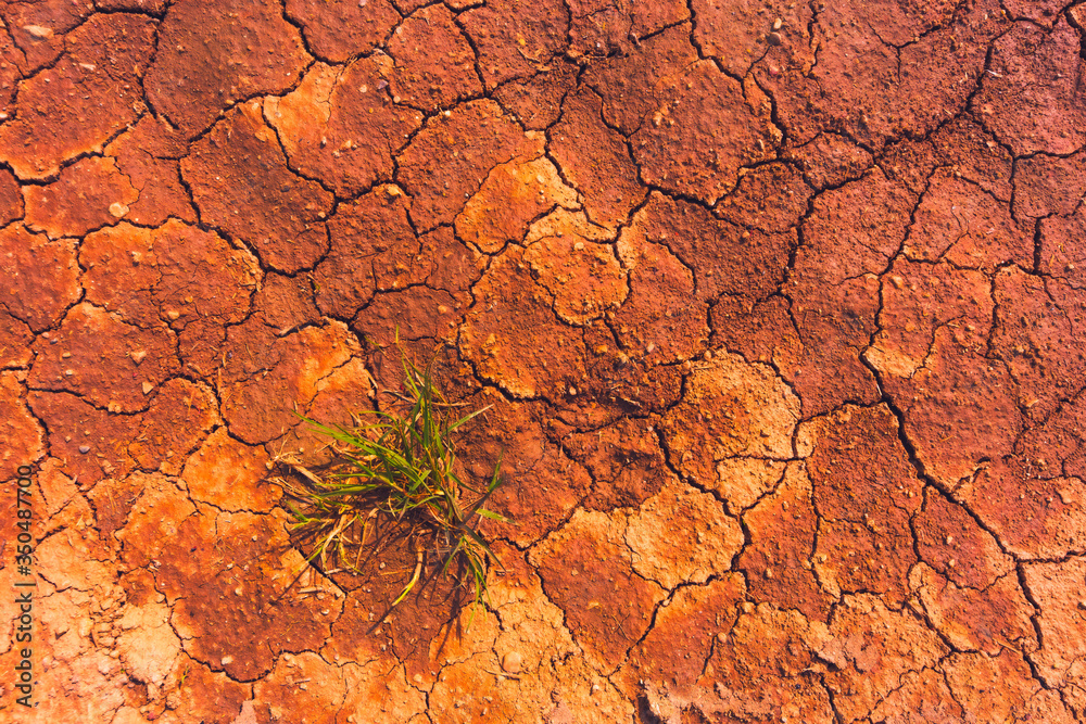Fototapeta Cracked earth, metaphoric for climate change and global warming