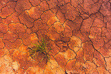 Cracked Earth, Metaphoric For ...