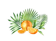 Watercolor Orange Fruits. Big Tropical Bouquet With Ripe Fruits And Palm Leaves. Botanical Hand Drawn Illustration For Print, Food Label Design