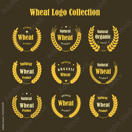 Collection of different gold silhouette circular laurel foliate. Tablou Canvas