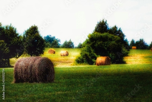 Fotografiet Hay Bales On Grassy Field Against Sky