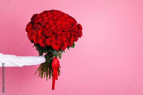 Photo of cropped man arm hold big one hundred red bright roses bunch giving girl Canvas Print