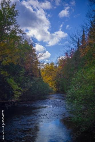 Autumn Trees Along River #350548772