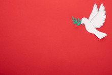 Top View Of White Dove As Symbol Of Peace On Red Background