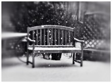 Snow On Wooden Park Bench During Winter