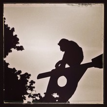 Silhouette Monkey Sitting On P...