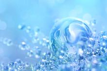 Floral Blue Color Light Backgr...