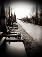 Road In Cemetery