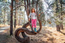 Girl In Rubber Boots And Sweatpants Climbing Pine Tree In Forest