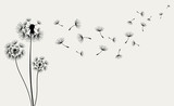Fototapeta Dmuchawce - Hand drawn of Dandelions. Vector illustration
