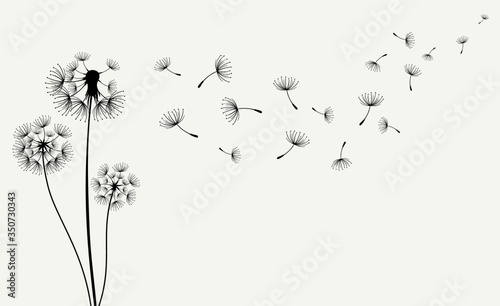 Papel de parede Hand drawn of Dandelions. Vector illustration