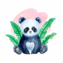 Cute Panda Bear. Hand Painted...
