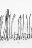 old weathered farm fence portrait view - 350758350