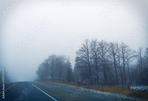 Fototapety, obrazy: Empty Road In Foggy Weather