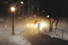 People With Umbrellas Standing On Road During Winter In City