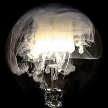 Macro Shot Of Illuminated Ligh...