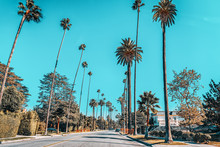 Urban Views Of The Beverly Hil...
