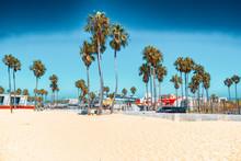 Famous Los Angeles Beach - Ven...
