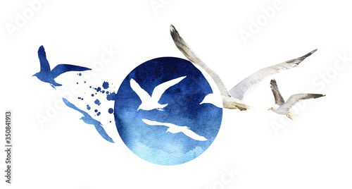 Fotografia A composition with a flock of seagulls on a blue round background hand drawn in watercolor isolated on a white background