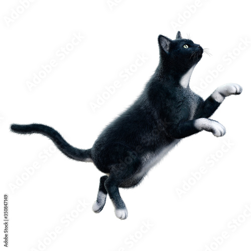 Tablou Canvas 3D Rendering Black Cat on White