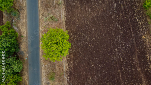 Aerial top view of agriculture field Canvas Print