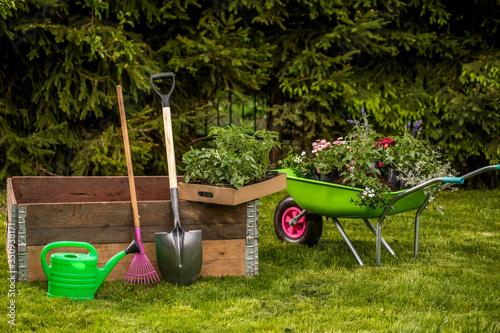 Canvas Small organic vegetable garden in urban area