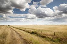 Beautiful Farmland In Essex En...