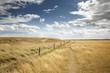 beautiful farmland in essex england