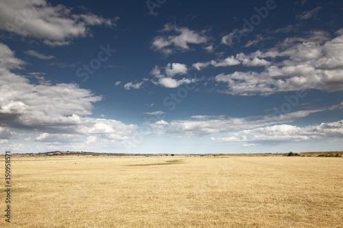 beautiful farmland in essex england Billede på lærred
