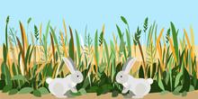 Two Bunnies Met In A Field Of ...