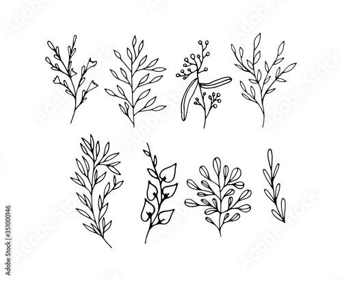 Obraz na plátně A set of branches