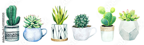 Set of six potted cactus plants and succulents Fotobehang