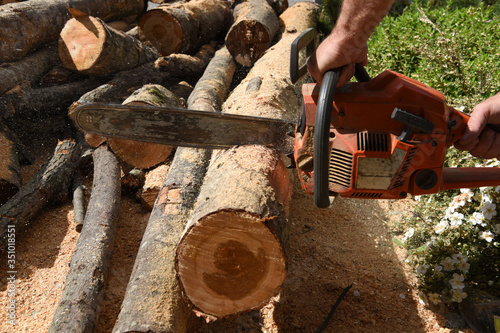 Vászonkép motosega tagliare legna legni alberi segatura tronchi