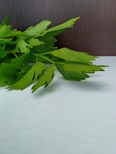 Wet Green Celery Leaves Lie On...