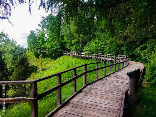 Photo Empty Wooden Footbridge Amidst Trees In Forest