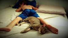 High Angle View Of Shirtless Boy And Cat Sleeping On Bed