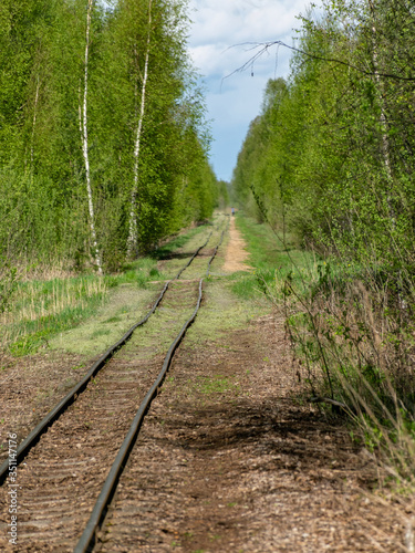 Photo a cross-country railway in a swampy forest,